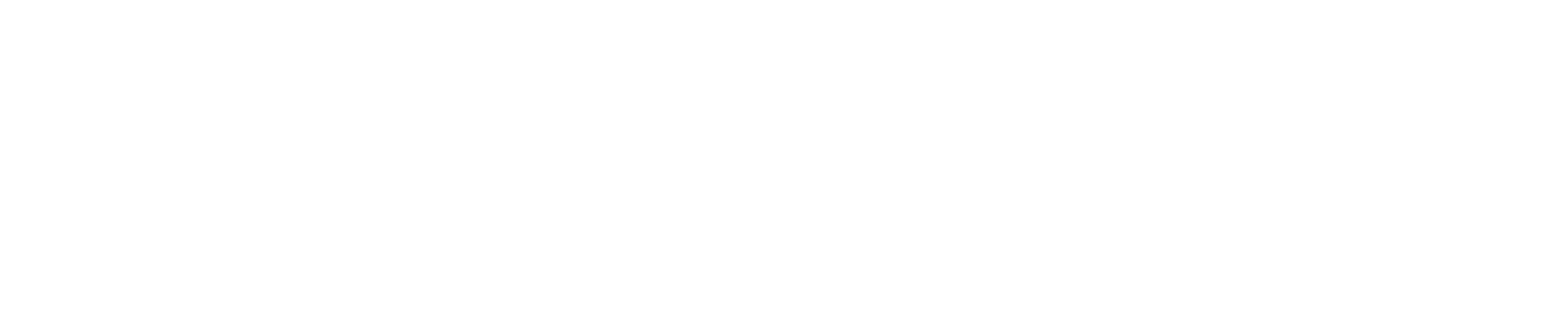 ScanAccount_2001-2021_logo